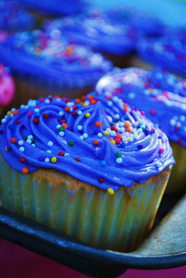 Blue Frosting Cupcake
